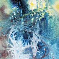 Light in blue tangled wood